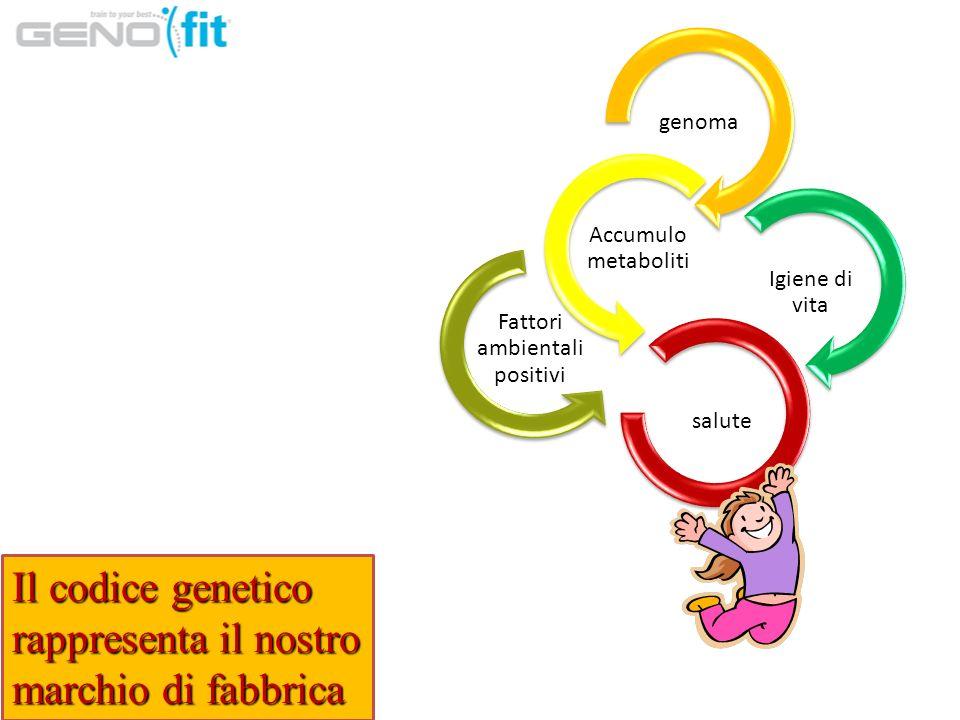 genoma Accumulo metaboliti Fattori ambientali positivi Igiene di vita salute Il codice genetico rappresenta il nostro marchio di fabbrica