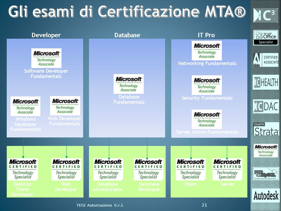 Desktop Client Developer Web Developer Database Administrator Database Developer ClientServer DeveloperDatabase Software Developer Fundamentals Web De