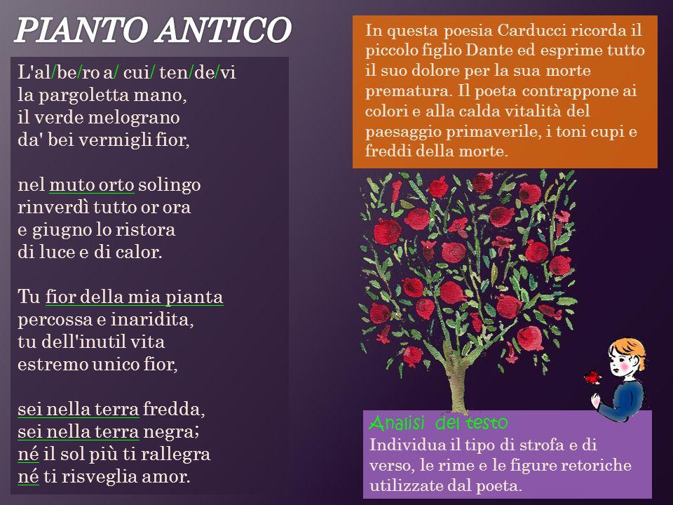 In questa poesia Carducci ricorda il piccolo figlio Dante ed esprime tutto il suo dolore per la sua morte prematura. Il poeta contrappone ai colori e