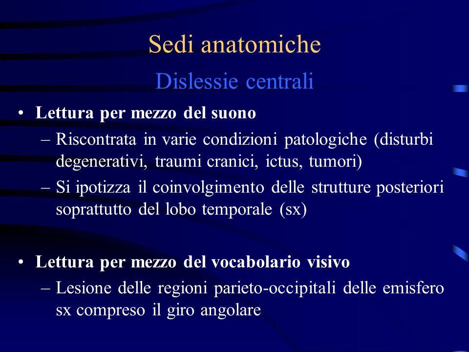 Sedi anatomiche Dislessie centrali Lettura per mezzo del suono –Riscontrata in varie condizioni patologiche (disturbi degenerativi, traumi cranici, ic