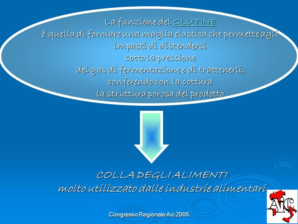 Congresso Regionale Aic 2005 COLLA DEGLI ALIMENTI molto utilizzato dalle industrie alimentari La funzione del GLUTINE è quella di formare una maglia e