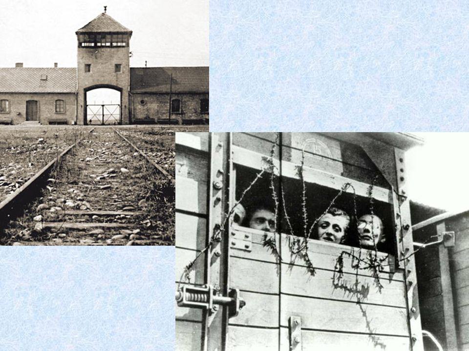 6.000.000 di Ebrei furono uccisi perché, quelle famose menti folli avevano deciso che così doveva essere, avevano deciso che nel mondo cera posto solo per loro, loro che erano i migliori