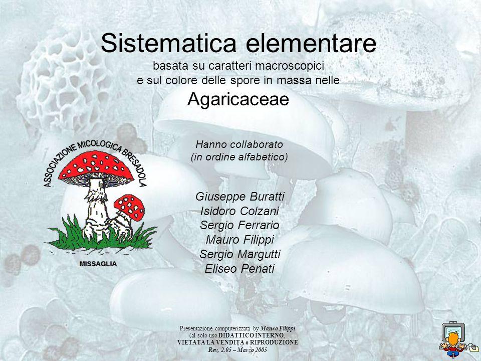 Sistematica elementare basata su caratteri macroscopici e sul colore delle spore in massa nelle Agaricaceae Hanno collaborato (in ordine alfabetico) G
