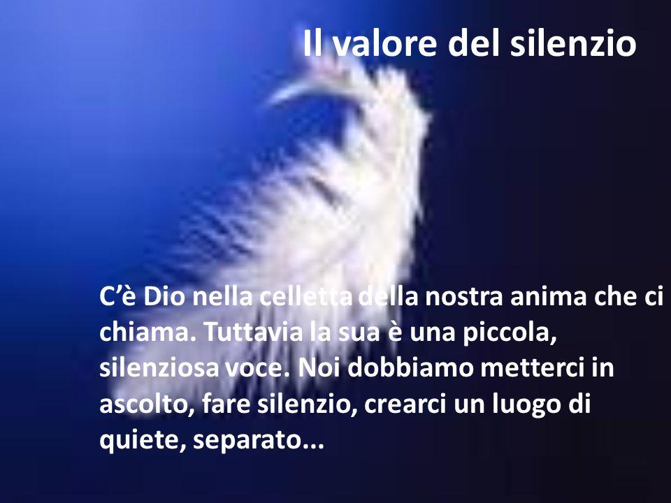 Il valore del silenzio Cè Dio nella celletta della nostra anima che ci chiama. Tuttavia la sua è una piccola, silenziosa voce. Noi dobbiamo metterci i