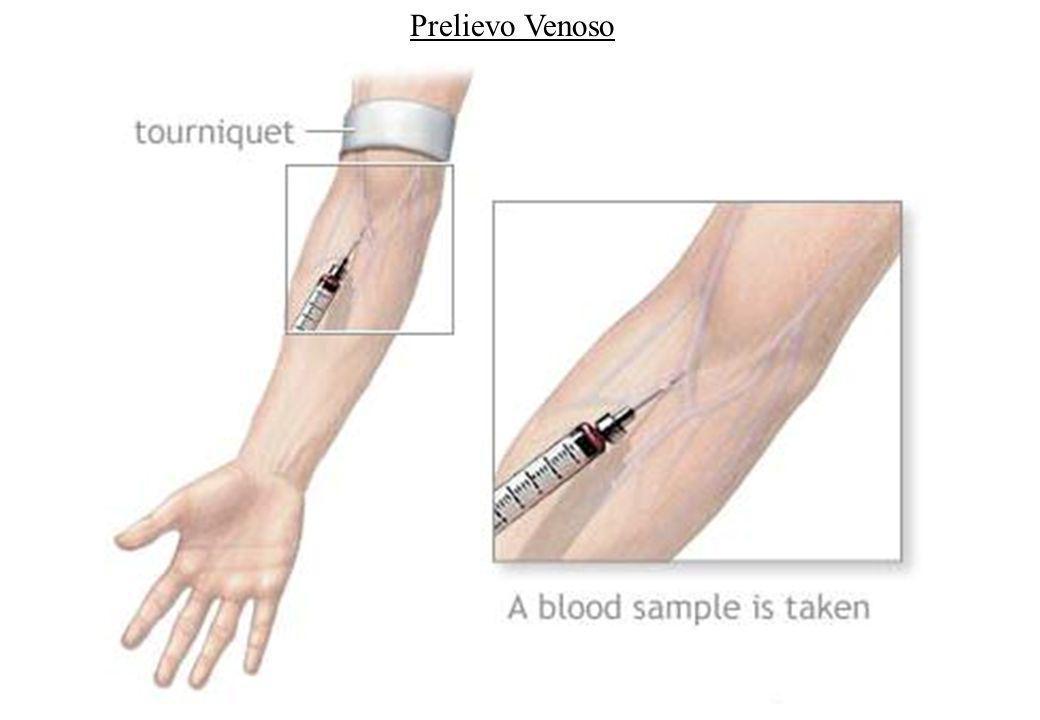 Piastrine: caratteristiche generali derivano dai megacariociti: sono elementi corpuscolati del sangue, che prendono parte, grazie alle loro capacità emostatiche, alla coagulazione del sangue.