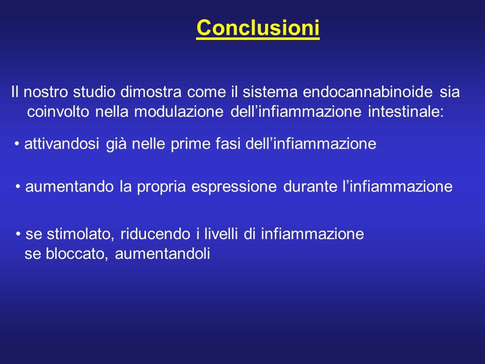 Conclusioni se stimolato, riducendo i livelli di infiammazione se bloccato, aumentandoli attivandosi già nelle prime fasi dellinfiammazione aumentando