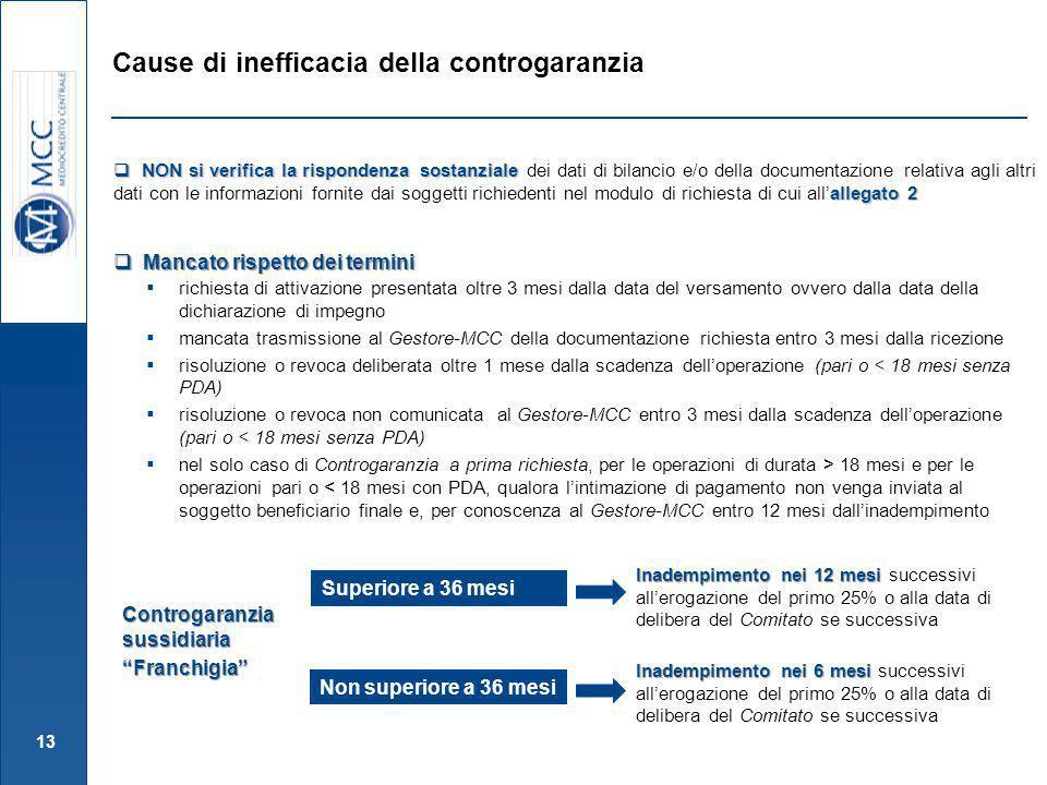 13 Mancato rispetto dei termini Mancato rispetto dei termini NON si verifica la rispondenza sostanziale allegato 2 NON si verifica la rispondenza sost