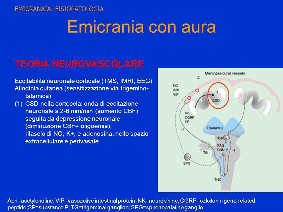TEORIA NEUROVASCOLARE Eccitabilità neuronale corticale (TMS, fMRI, EEG) Allodinia cutanea (sensitizzazione via trigemino- talamica) (1)CSD nella corte