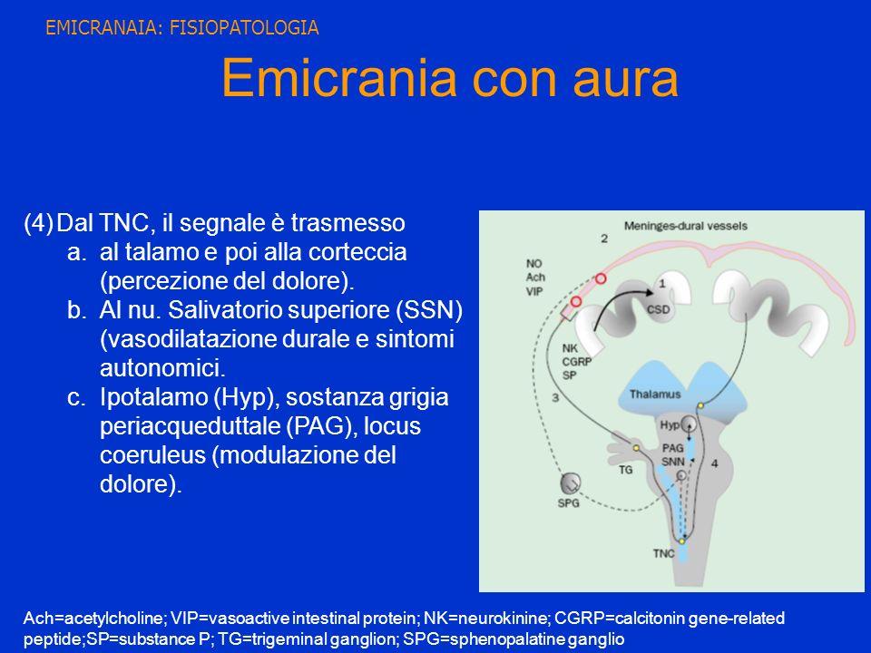Emicrania con aura (4)Dal TNC, il segnale è trasmesso a.al talamo e poi alla corteccia (percezione del dolore). b.Al nu. Salivatorio superiore (SSN) (