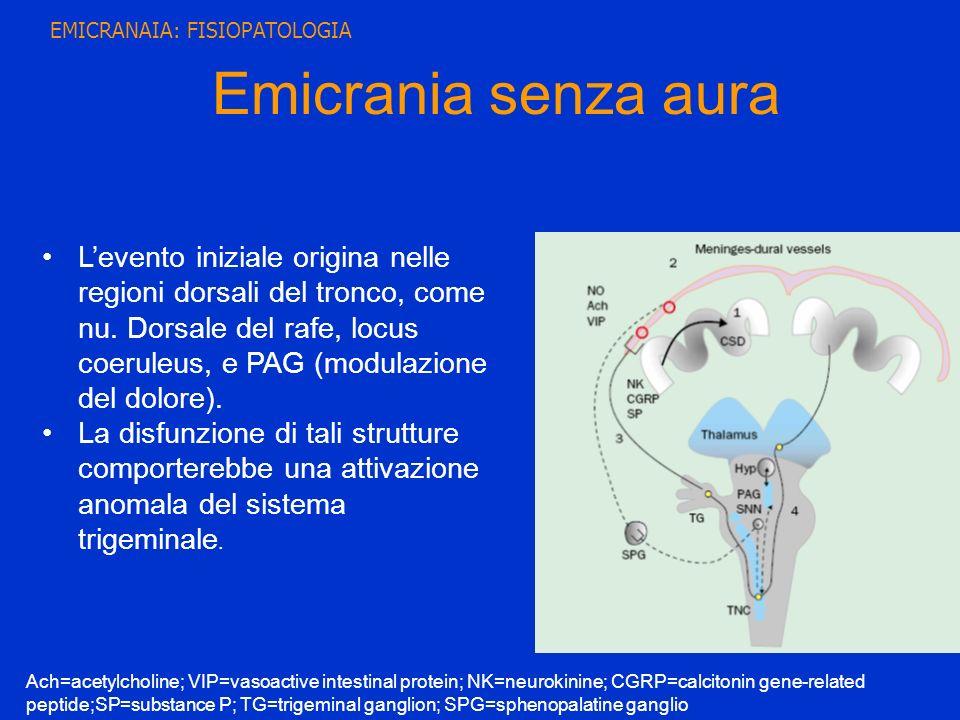Emicrania senza aura Levento iniziale origina nelle regioni dorsali del tronco, come nu. Dorsale del rafe, locus coeruleus, e PAG (modulazione del dol