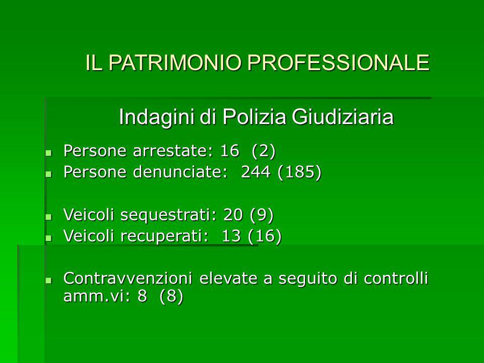 IL PATRIMONIO PROFESSIONALE Indagini di Polizia Giudiziaria Persone arrestate: 16 (2) Persone denunciate: 244 (185) Veicoli sequestrati: 20 (9) Veicoli recuperati: 13 (16) Contravvenzioni elevate a seguito di controlli amm.vi: 8 (8)