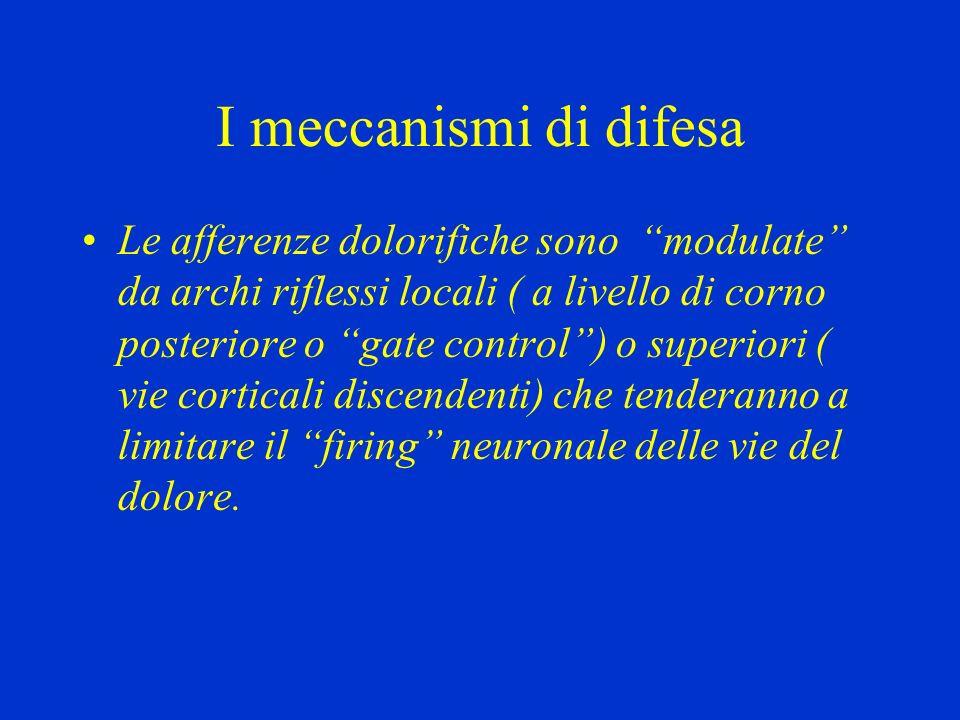 I meccanismi di difesa Le afferenze dolorifiche sono modulate da archi riflessi locali ( a livello di corno posteriore o gate control) o superiori ( v