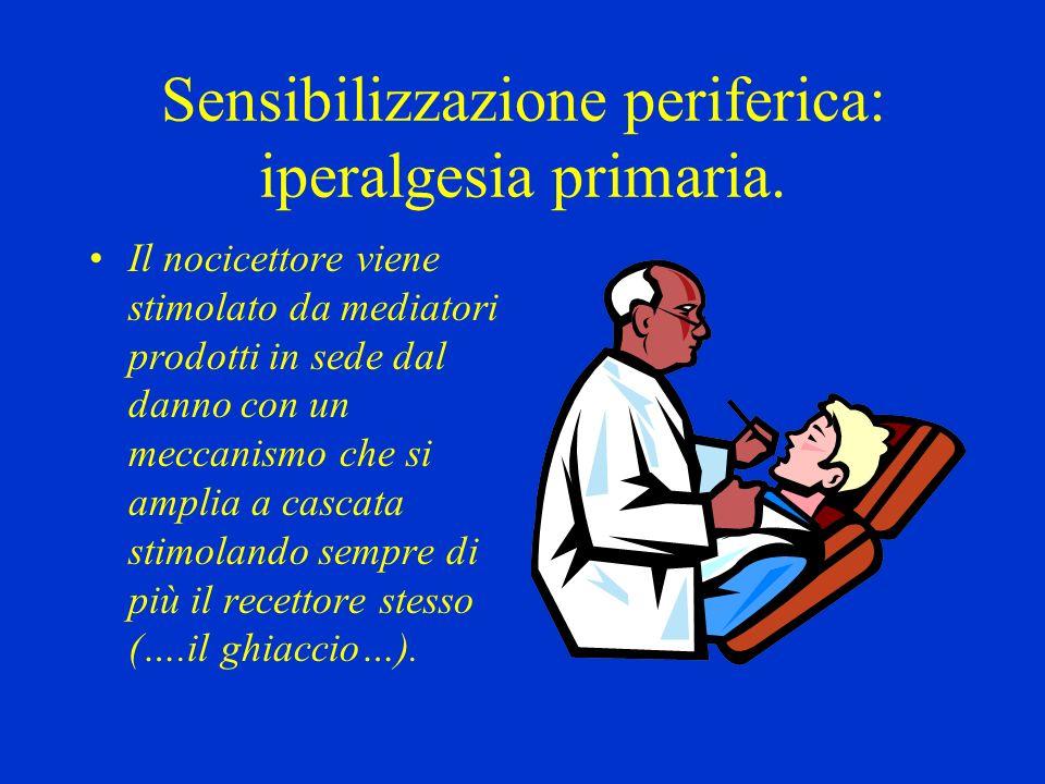 Sensibilizzazione periferica: iperalgesia primaria. Il nocicettore viene stimolato da mediatori prodotti in sede dal danno con un meccanismo che si am