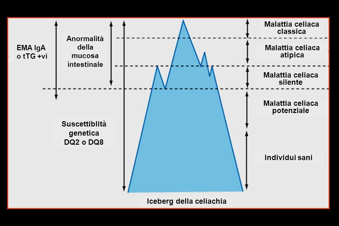 EMA IgA o tTG +vi Suscettiblità genetica DQ2 o DQ8 EMA IgA o tTG +vi Anormalità della mucosa intestinale Malattia celiaca classica Malattia celiaca atipica Malattia celiaca silente Malattia celiaca potenziale Individui sani Iceberg della celiachia