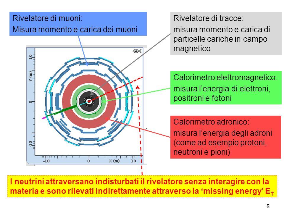8 Rivelatore di tracce: misura momento e carica di particelle cariche in campo magnetico Calorimetro elettromagnetico: misura lenergia di elettroni, positroni e fotoni Calorimetro adronico: misura lenergia degli adroni (come ad esempio protoni, neutroni e pioni) Rivelatore di muoni: Misura momento e carica dei muoni I neutrini attraversano indisturbati il rivelatore senza interagire con la materia e sono rilevati indirettamente attraverso la missing energy E T
