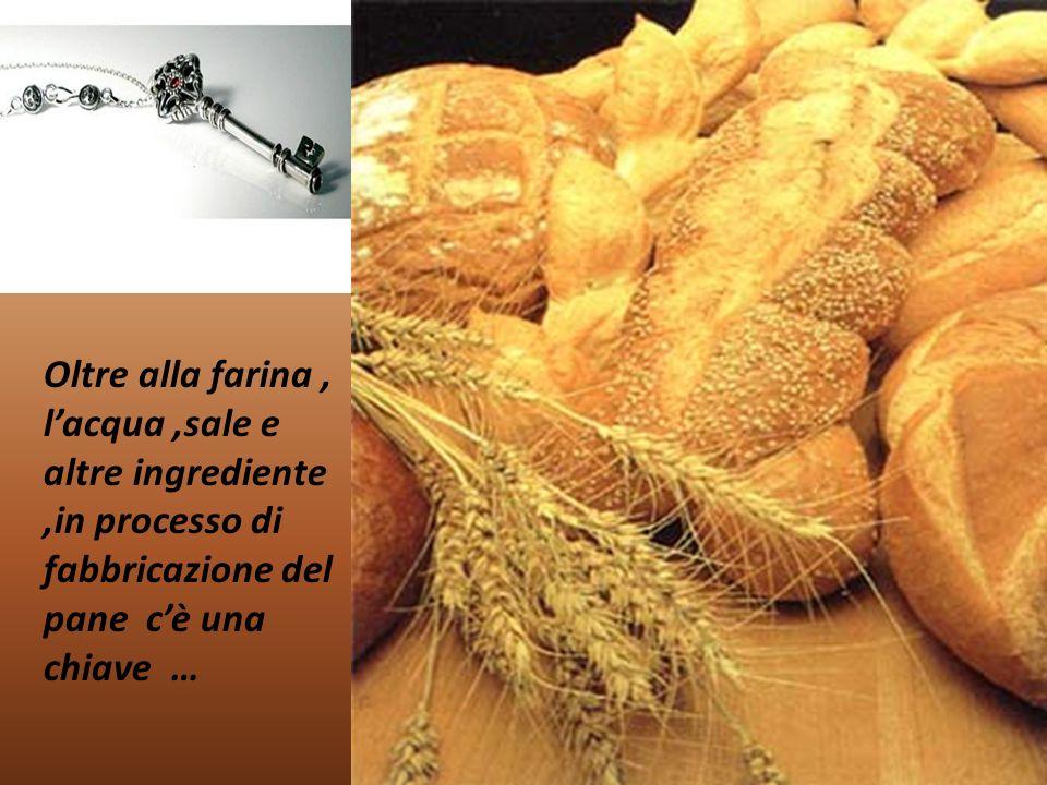 Oltre alla farina, lacqua,sale e altre ingrediente,in processo di fabbricazione del pane cè una chiave …
