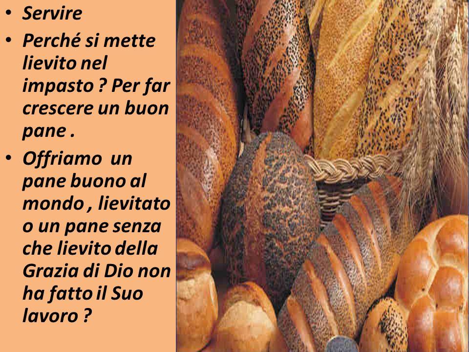 Servire Perché si mette lievito nel impasto ? Per far crescere un buon pane. Offriamo un pane buono al mondo, lievitato o un pane senza che lievito de