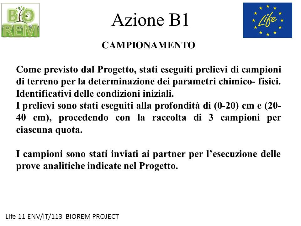 Life 11 ENV/IT/113 BIOREM PROJECT Azione B2 SCELTA DELLA SOSTANZA ORGANICA ESOGENA Quale sostanza organica esogena è stato selezionato un ammendante compostato misto, prodotto da Romagna Compost.