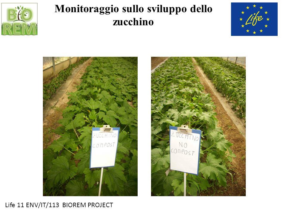Life 11 ENV/IT/113 BIOREM PROJECT Prospetto produttivo 2013 CompostNo Compost Prod.