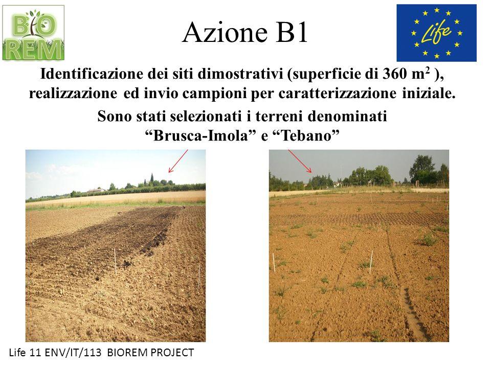 Life 11 ENV/IT/113 BIOREM PROJECT Azione B1 Identificazione dei siti dimostrativi (superficie di 360 m 2 ), realizzazione ed invio campioni per caratt