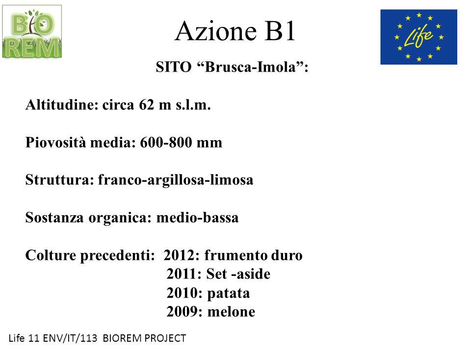 Life 11 ENV/IT/113 BIOREM PROJECT Azione B1 SITO Brusca-Imola: Altitudine: circa 62 m s.l.m. Piovosità media: 600-800 mm Struttura: franco-argillosa-l