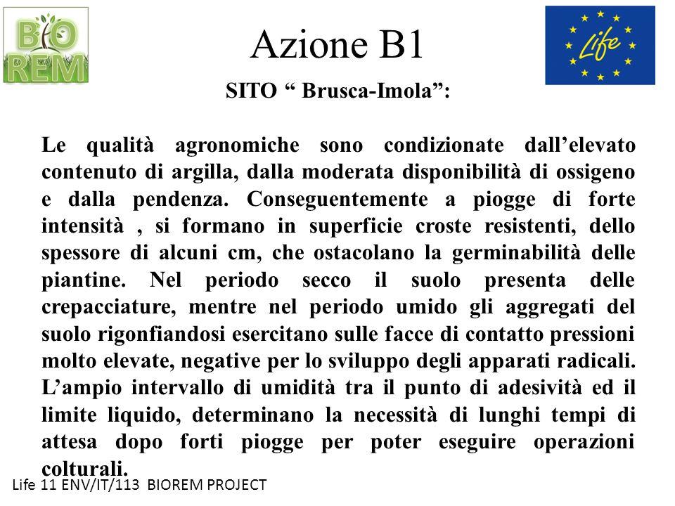 Life 11 ENV/IT/113 BIOREM PROJECT Azione B1 SITO Brusca-Imola: Le qualità agronomiche sono condizionate dallelevato contenuto di argilla, dalla modera