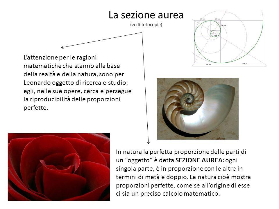 La sezione aurea (vedi fotocopie) Lattenzione per le ragioni matematiche che stanno alla base della realtà e della natura, sono per Leonardo oggetto di ricerca e studio: egli, nelle sue opere, cerca e persegue la riproducibilità delle proporzioni perfette.