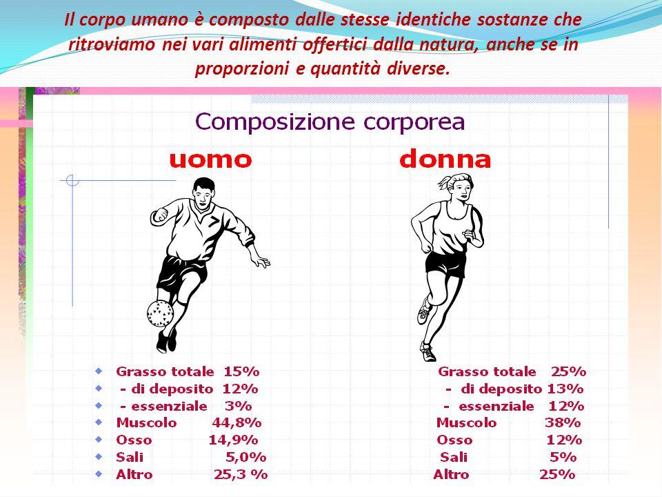 Il corpo umano è composto dalle stesse identiche sostanze che ritroviamo nei vari alimenti offertici dalla natura, anche se in proporzioni e quantità