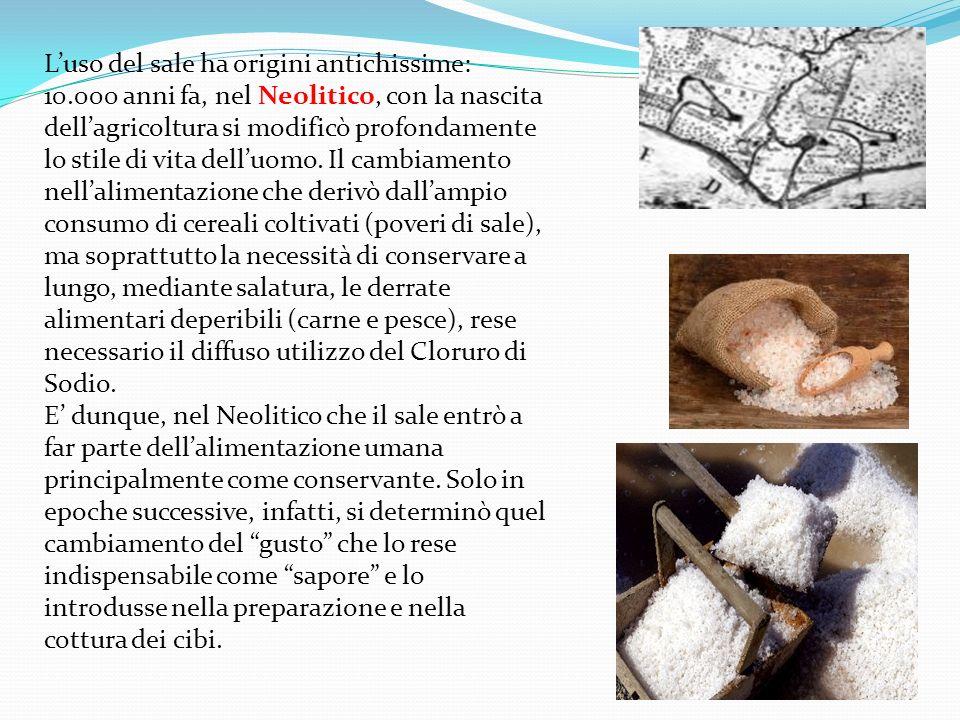 Luso del sale ha origini antichissime: 10.000 anni fa, nel Neolitico, con la nascita dellagricoltura si modificò profondamente lo stile di vita delluo