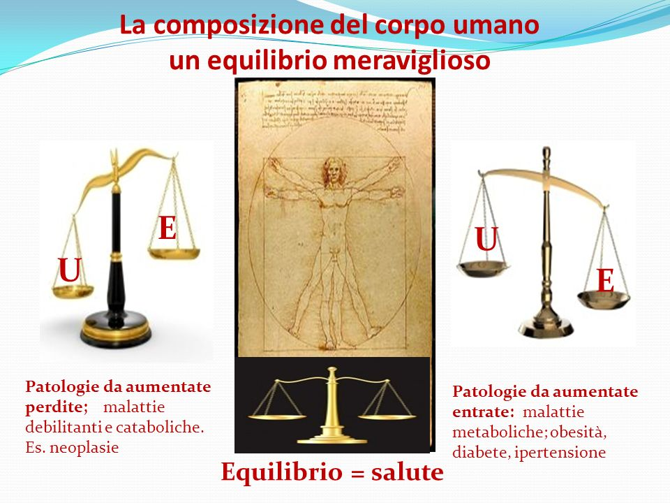 La composizione del corpo umano un equilibrio meraviglioso Equilibrio = salute E U E U Patologie da aumentate perdite; malattie debilitanti e cataboli