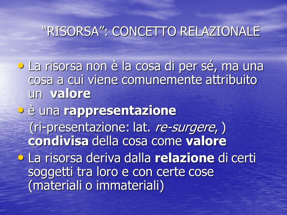 RISORSA: CONCETTO RELAZIONALE RISORSA: CONCETTO RELAZIONALE La risorsa non è la cosa di per sé, ma una cosa a cui viene comunemente attribuito un valo