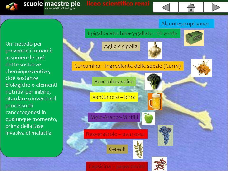 http://www.mednat.org/ http://it.wikipedia.org/ http://www.youtube.com/?gl=IT&hl=it users.unimi.it tesi.cab.unipd.it/23605 http://www.erbeofficinali.org http://www.elisir.rai.it http://www.neoplasie.com