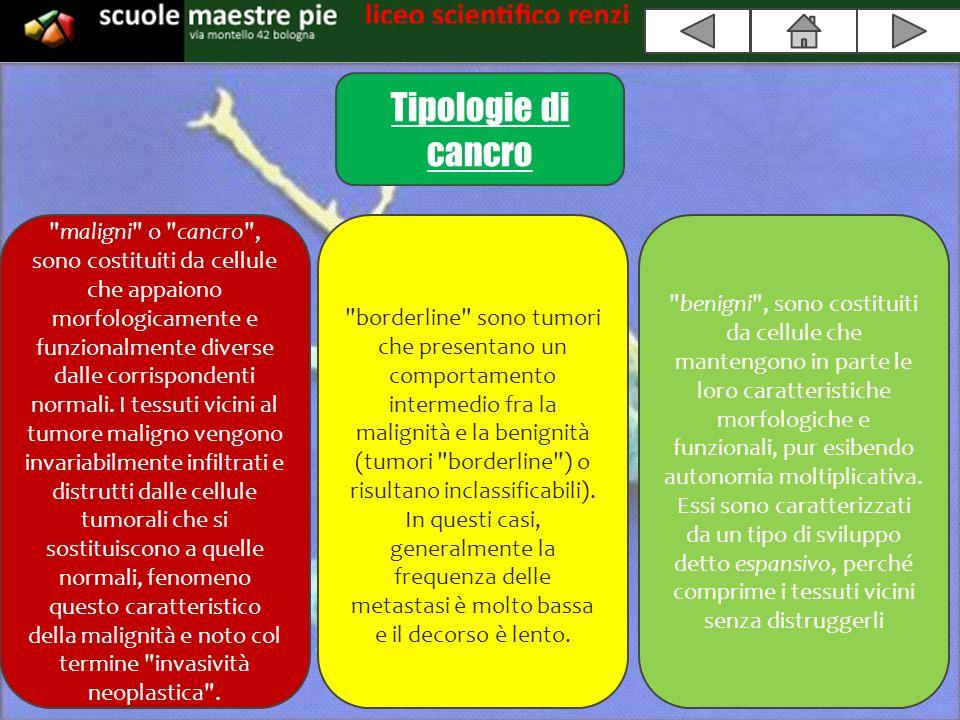 Tipologie di cancro maligni o cancro , sono costituiti da cellule che appaiono morfologicamente e funzionalmente diverse dalle corrispondenti normali.