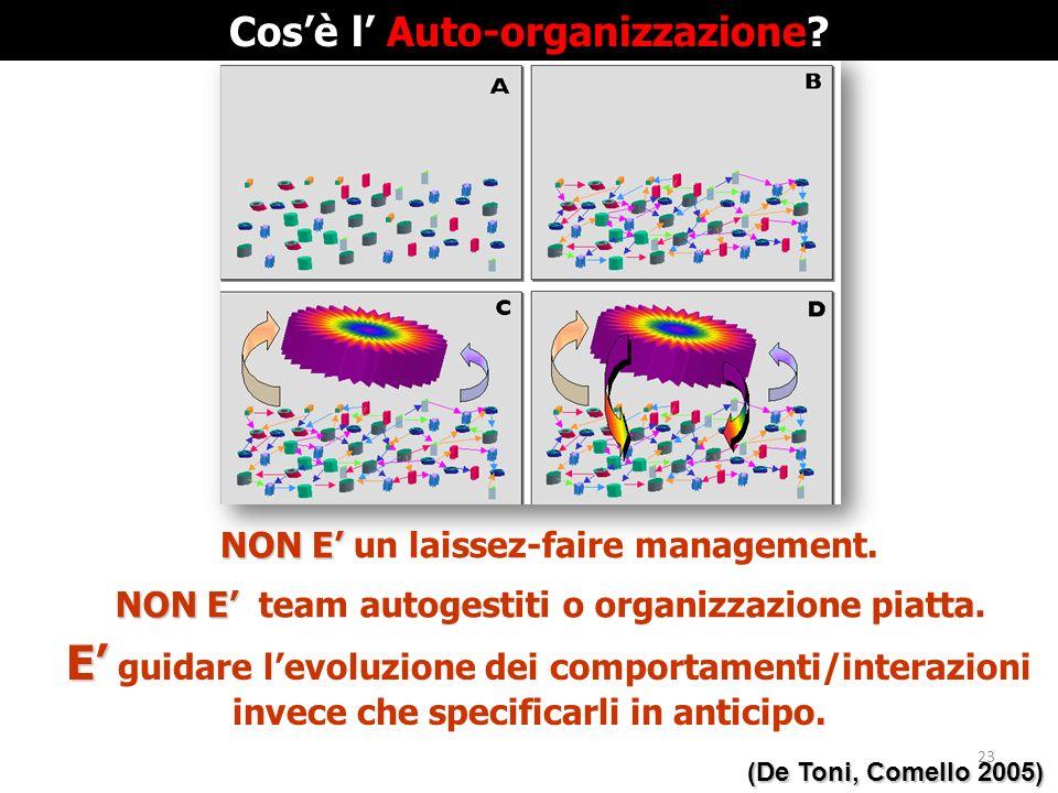 NON E NON E team autogestiti o organizzazione piatta. (De Toni, Comello 2005) E E guidare levoluzione dei comportamenti/interazioni invece che specifi