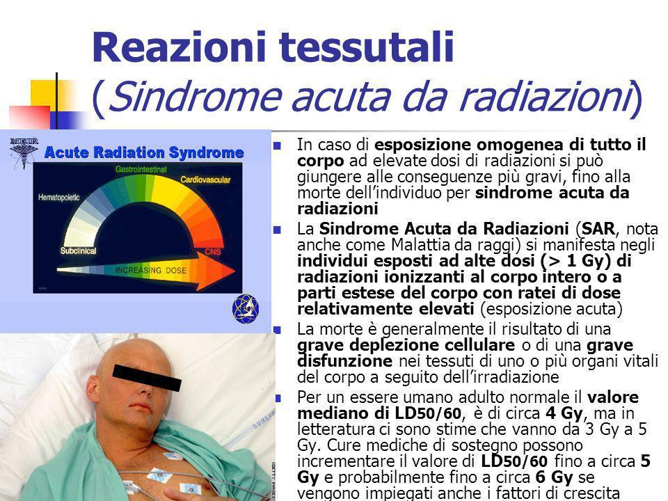 Reazioni tessutali (Sindrome acuta da radiazioni) In caso di esposizione omogenea di tutto il corpo ad elevate dosi di radiazioni si può giungere alle