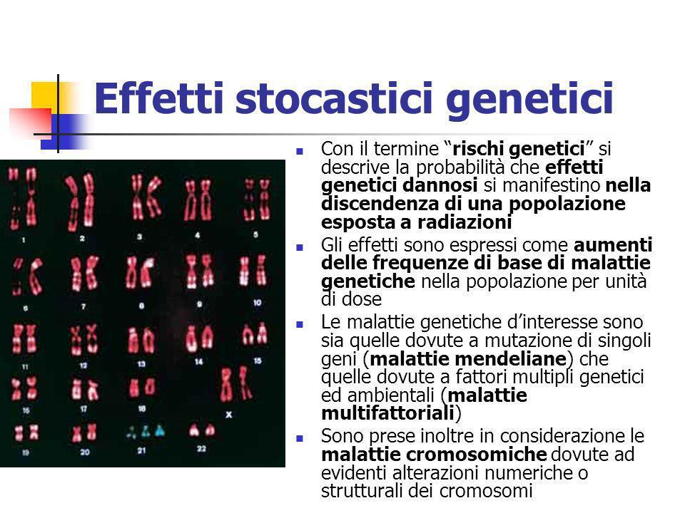 Effetti stocastici genetici Con il termine rischi genetici si descrive la probabilità che effetti genetici dannosi si manifestino nella discendenza di