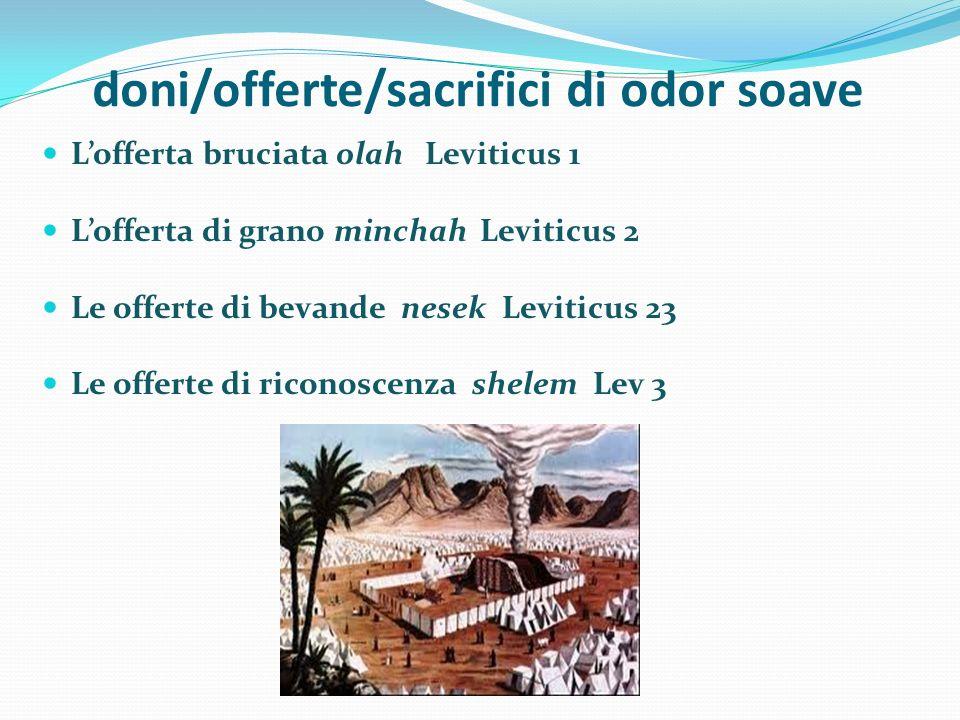 doni/offerte/sacrifici di odor soave Lofferta bruciata olah Leviticus 1 Lofferta di grano minchah Leviticus 2 Le offerte di bevande nesek Leviticus 23