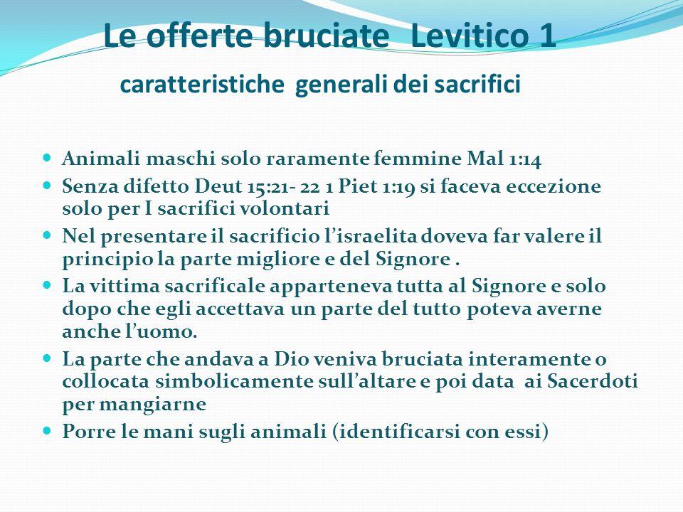 Le offerte bruciate Levitico 1 caratteristiche generali dei sacrifici Animali maschi solo raramente femmine Mal 1:14 Senza difetto Deut 15:21- 22 1 Pi