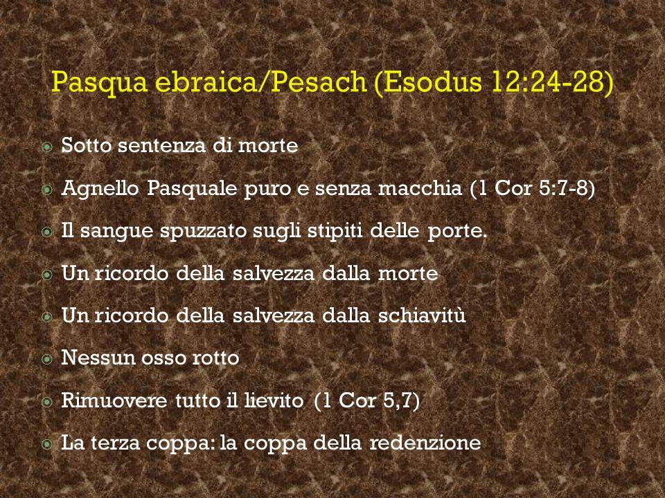 Pasqua ebraica/Pesach (Esodus 12:24-28) Sotto sentenza di morte Agnello Pasquale puro e senza macchia (1 Cor 5:7-8) Il sangue spuzzato sugli stipiti d