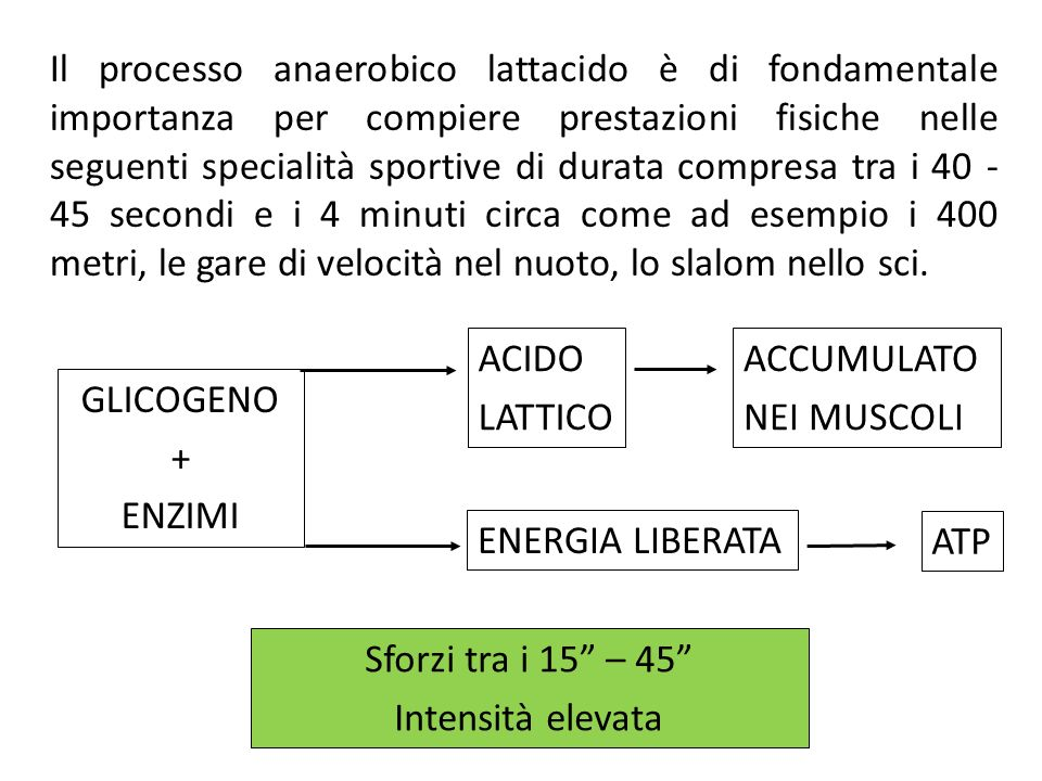 Il processo anaerobico lattacido è di fondamentale importanza per compiere prestazioni fisiche nelle seguenti specialità sportive di durata compresa t
