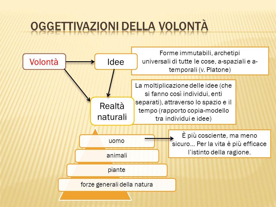 La moltiplicazione delle idee (che si fanno così individui, enti separati), attraverso lo spazio e il tempo (rapporto copia-modello tra individui e idee) Forme immutabili, archetipi universali di tutte le cose, a-spaziali e a- temporali (v.