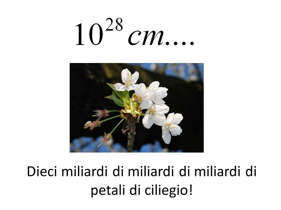 Dieci miliardi di miliardi di miliardi di petali di ciliegio!