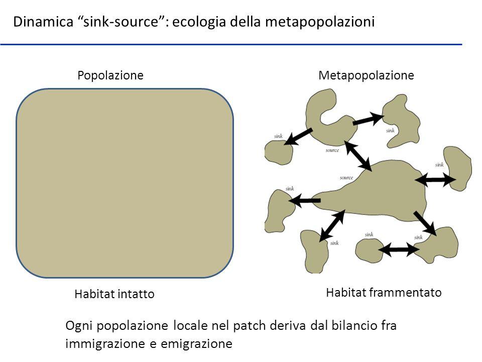 Dinamica sink-source: ecologia della metapopolazioni Ogni popolazione locale nel patch deriva dal bilancio fra immigrazione e emigrazione Habitat inta