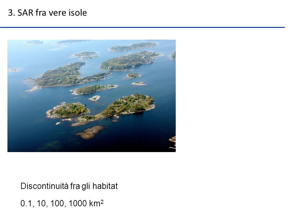 Discontinuità fra gli habitat 3. SAR fra vere isole 0.1, 10, 100, 1000 km 2