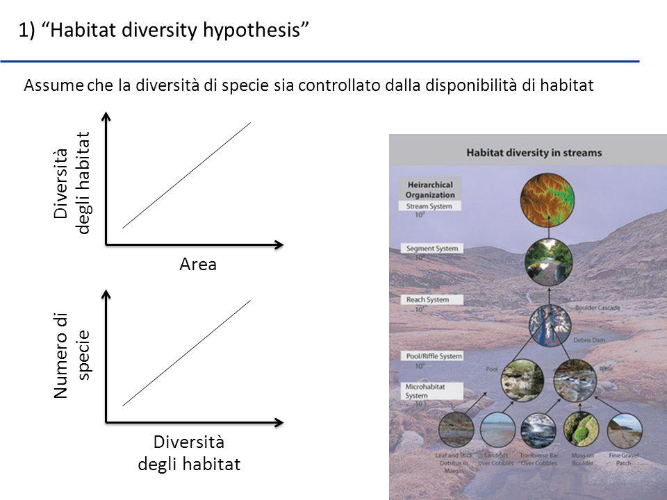 Assume che la diversità di specie sia controllato dalla disponibilità di habitat 1) Habitat diversity hypothesis Area Diversità degli habitat Diversit