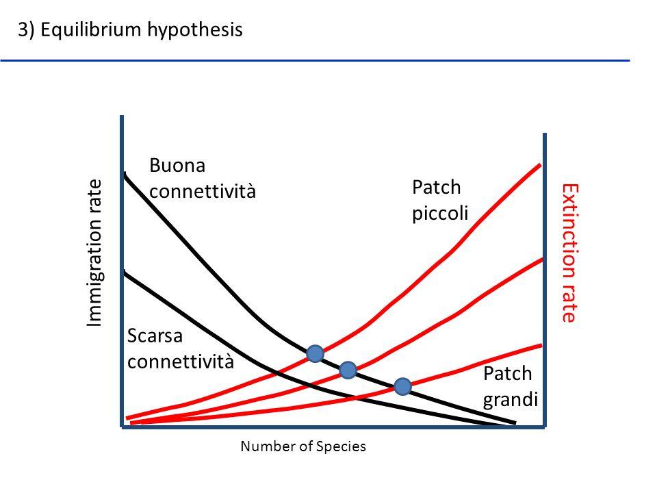 Number of Species Immigration rate Extinction rate 3) Equilibrium hypothesis Buona connettività Scarsa connettività Patch piccoli Patch grandi