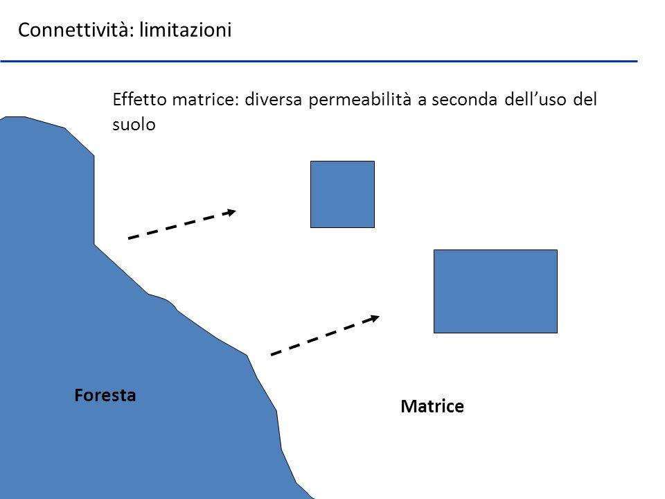 Effetto matrice: diversa permeabilità a seconda delluso del suolo Connettività: limitazioni Foresta Matrice