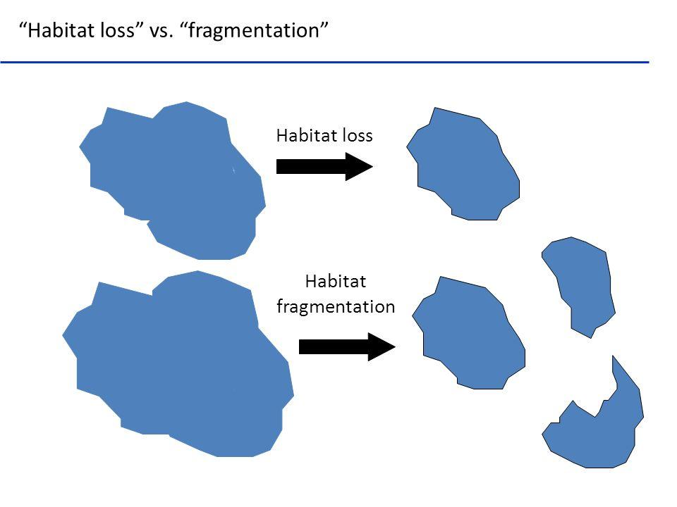 Habitat loss Habitat fragmentation Habitat loss vs. fragmentation