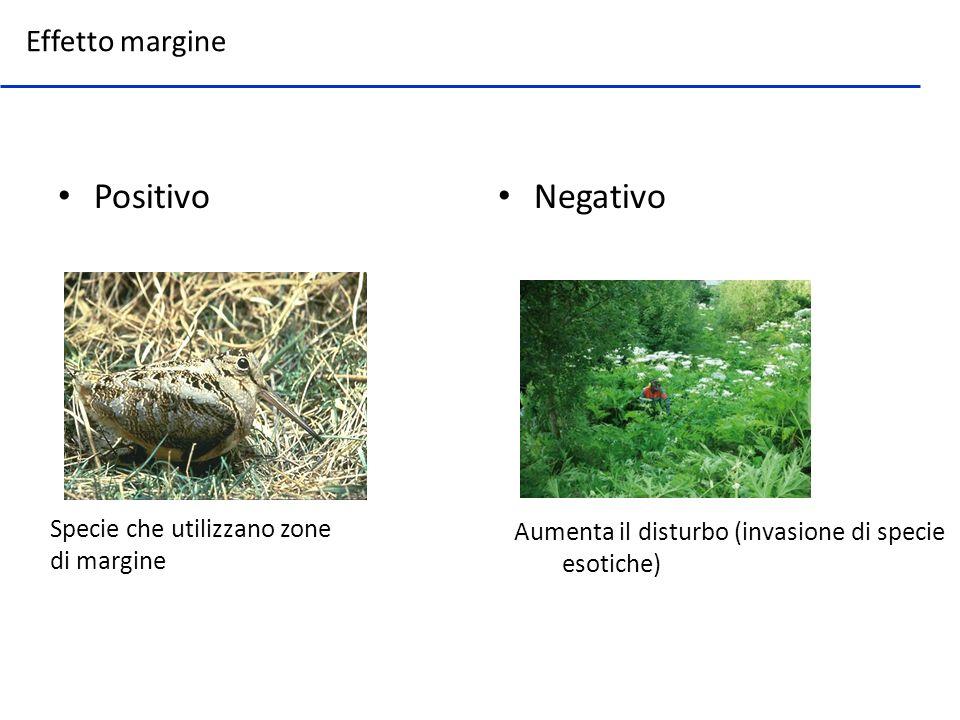 Positivo Negativo Effetto margine Specie che utilizzano zone di margine Aumenta il disturbo (invasione di specie esotiche)