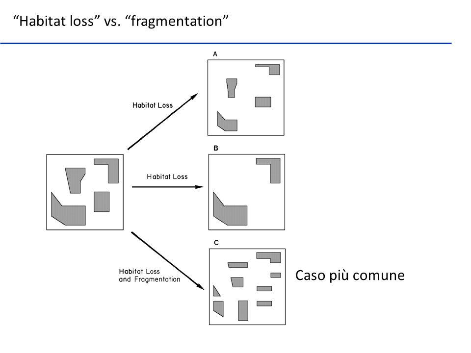 Patch – Frammento di habitat focale Corridoio –Habitat lineare che connette i patch Matrice – Uso del suolo che domina il paesaggio e che ha sostituito lhabitat Tre elementi base in paesaggi frammentati